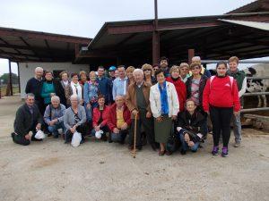 Excursió Associació Veïns sa Coma 22-11-2014 008