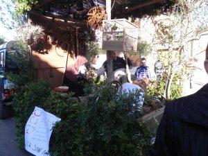 Beneïdes terme municipal Sant Llorenç18-01-2015 003