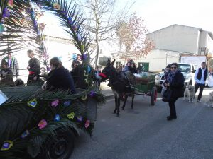 Beneïdes terme municipal Sant Llorenç18-01-2015 004