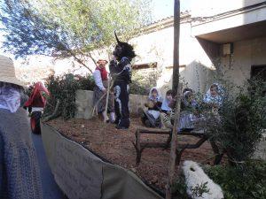 Beneïdes terme municipal Sant Llorenç18-01-2015 010