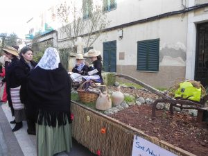 Beneïdes terme municipal Sant Llorenç18-01-2015 017
