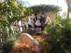 Beneïdes terme municipal Sant Llorenç18-01-2015 030