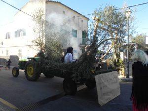 Beneïdes terme municipal Sant Llorenç18-01-2015 065