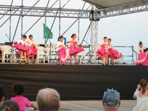 Fotos Nit Multicultural festes sa Coma 16-07-2015 034
